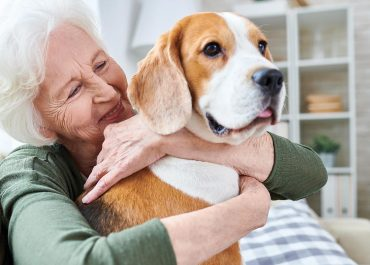 A care home manager's guide to pet therapy