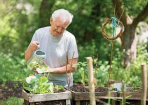 National Growing for Wellbeing Week – Mental Health Support